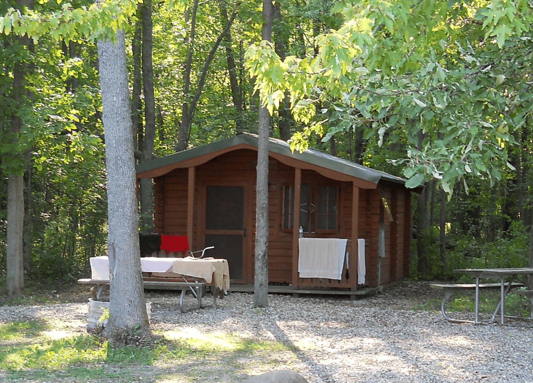 suite cabin sherwood cabins forest in log b rentals logcabin accommodations michigan
